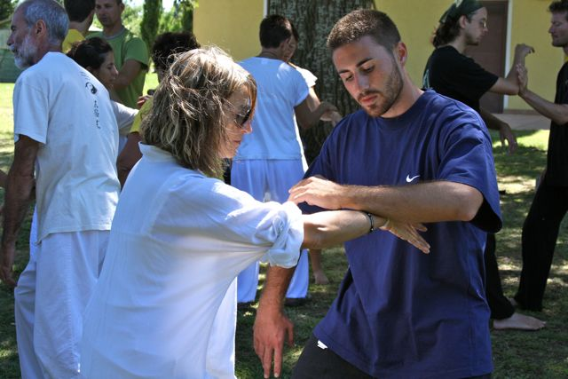 Partner work in Tai Chi Chuan