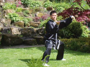 Feng Song: Taijiquan Skills for Beginners