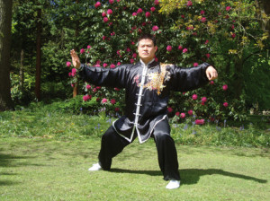 Taijiquan Skills for Beginners2