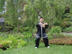 Taijiquan Skills for Beginners4