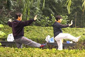 chinese-taiji