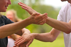 Aspects of Tai Chi: meditativ, form, weapons, partnerwork...
