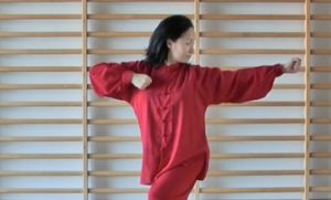 Hui Chun Gong exercise instructions with video