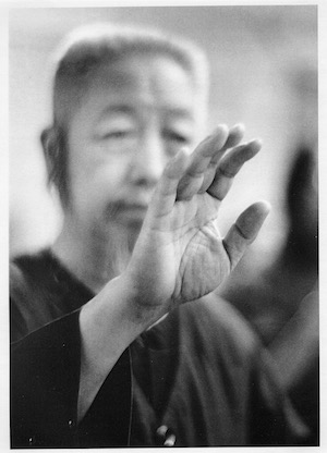 Cheng Man Ching's way of teaching (3): On meditation