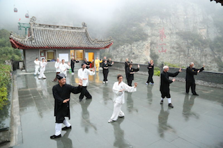 Wudang 5 Animals