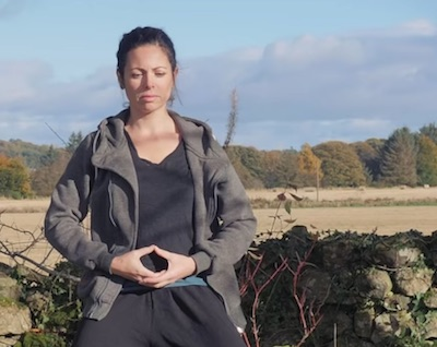 WUDANG SINGLE TURTLE MOVE QIGONG WITH OPEN AND CLOSE