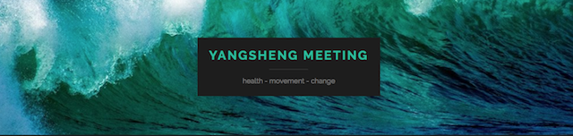 Yangsheng Meeting 2018