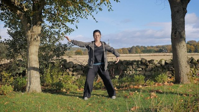 WUDANG SINGLE SNAKE MOVE QIGONG - Qigong beginners