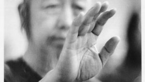 """The title of """"Master"""" in the Tai Chi lineage following Cheng Man Ching"""