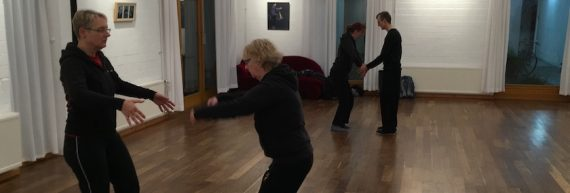 Impressions from partner exercises