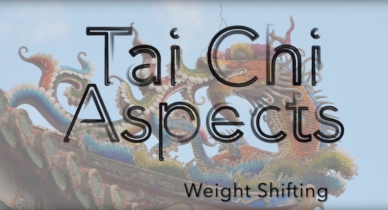 Tai Chi Aspects